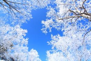 3月 川湯温泉街から 冷え込みが強い朝に見られる樹氷